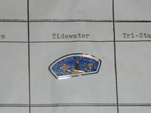 Tidewater Council CSP Shaped Pin - Scout