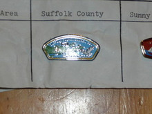 Suffolk County Council CSP Shaped Pin - Scout