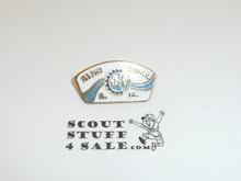 Illowa Council CSP Shape Pin #2