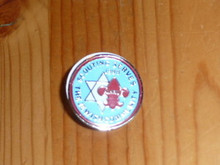 1988 Scouting Serves the Jewish Community Pin - Scout