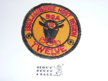 1953 National Jamboree Region 12 Host Patch, Lt. use