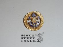 Assistant District Commissioner Collar Brass, Tall Crown, 2 Post Back, MINT Condition 20876