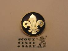 International Scouting Emblem Pin