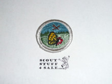 Nature (silver bdr) - Type H - Fully Embroidered Plastic Back Merit Badge (1971-2002)
