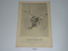 "1961 Calendar With Animal Drawings by Earnest Thompson-Seton, Complete and Unmarked, 10""x14"""