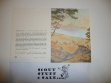 Baden Powell Painting on Greeting Card Made By Unicef, Inside Blank, Impala