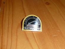 BSA Region 11 Pin - Scout