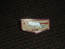 White Panther O.A. Lodge #345 Flap Pin - Scout