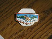 Wawookia O.A. Lodge #400 Flap Pin - Scout