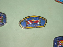 1985 NJ Public Health Officer Pin - Scout