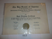 1950 Basic Training Professional BSA Certificate, presented