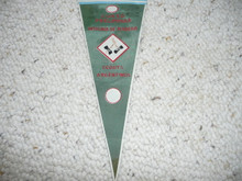 Old Argentinian Boy Scout Pennant