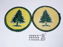 Pine Tree Patrol Medallion, Yellow Twill with plastic back, 1972-1989