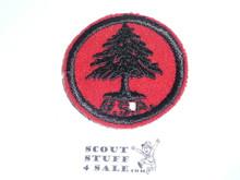 Pine Tree Patrol Medallion, Felt w/BSA & Solid Black Ring back, 1933-1939, Unused but small moth hole