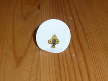 Small Foreign Scout Emblem fdl Pin - Scout