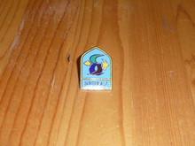 BSA Southeast Region Pin - Scout