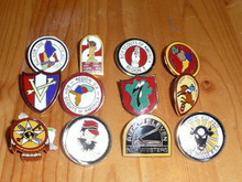 BSA Region Complete 12 Pin Set - Scout
