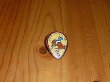 BSA Region 8 Pin - Scout