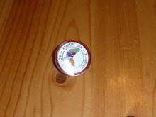 BSA Region 6 Pin - Scout