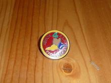 BSA Region 4 Pin - Scout