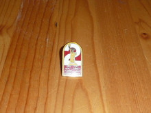 BSA Region 2 Pin - Scout