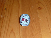 BSA Nouth Central Region Pin - Scout