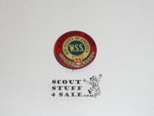 WWI Boy Scouts of America Achievement Award