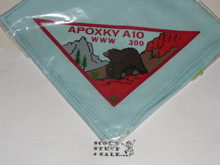 Order of the Arrow Lodge #300 Apoxky Aio n1 Neckerchief