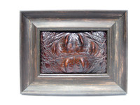 Custom FRAMED  9 x 7 Vintage Genuine CROCODILE Skin Upcycled ART - Home Decor