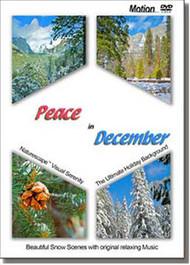 Peace in December (Std. Motion DVD)