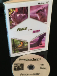 Peace in the Wild_(Std. Motion DVD)