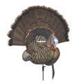 Avian-X AVX8021 8021 Trophy Tom - Turkey Decoy - AVX8021