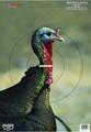 Birchwood Casey 35403 PreGame - Turkey 12x18 Target 8/Pk - 35403