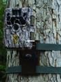 Browning Trail Cameras BTC TM Tree - Mount - BTC TM