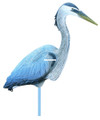 Flambeau 5960CD Great Blue Heron - Decoy - 5960CD