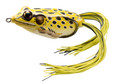 """LiveTarget FGH45T501 Frog Hollow - Body Topwater Lure, 1 3/4"""", #1 Hook - FGH45T501"""