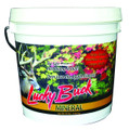 Lucky Buck LBM20 Deer Mineral - Supplement, Apple Flavored, 20 lb - LBM20