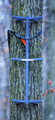 "Rivers Edge RE718 Grip Stick Single - Climbing Stick 300Lb Capacity 32"" - RE718"