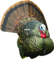 Avian-X AVX8004 8004 LCD Stutter - Turkey Decoy, Full Body, Collapsable - AVX8004