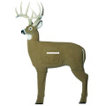 GlenDel 71010 Crossbow Buck 4-side - Vital Insert - 71010