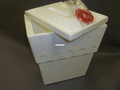 Plastilite GR13R-12 13 Quart Picnic - Cooler w/Rope Handle 12 Carton - GR13R-12
