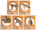 Champion - Critter Series Targets (10pk) - 45781