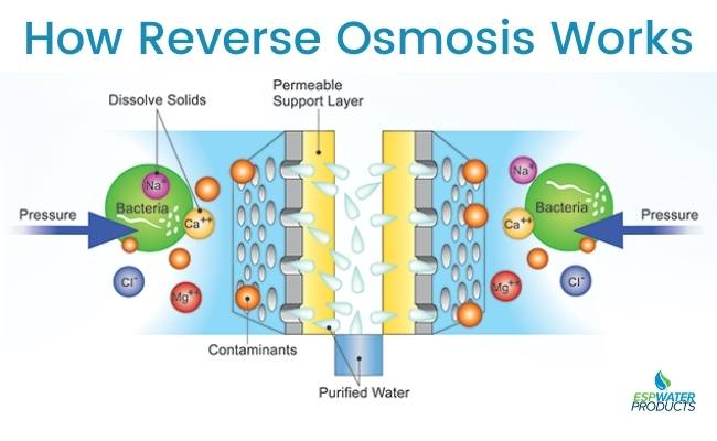 How reverse osmosis water filters works
