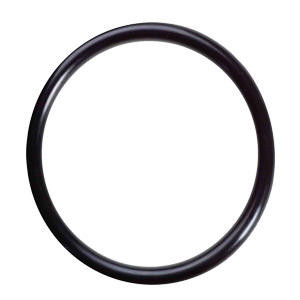 Pura PURA O-ring for Inner Quartz Sleeve UVBB 34202022 34202022