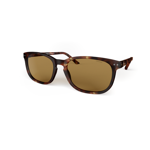Sunglasses XL Tortoise, Brown Lenses by the side. Polarized sunglasses Blueberry