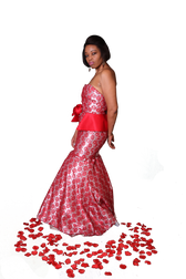 Red and Silver Gown