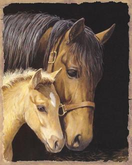 PL Horses 25x20cm