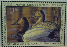 Photo of FEDERAL DUCK HUNTING STAMP 1994 WITH DRAWING CANVASBACK DUCKS IN MUTED COLORS