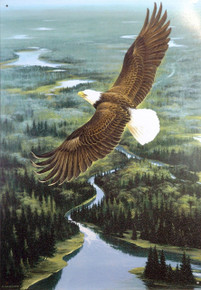 EAGLE IN FLIGHT SIGN SHOWS EAGLE SOARING HIGH ABOVE  A RIVER SURROUNDED BY FOREST, RICH COLOR AND NICE DETAIL