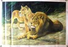 LIONS medium large OIL PAINTING